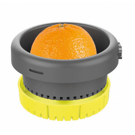 Citrus Press & Pulp System